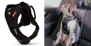 El arnés de seguridad más seguro para llevar al perro en coche - EzyDog
