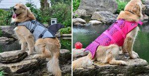 Chaleco salvavidas para perros con forma de tiburón o sirena - FONLAM