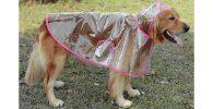 Chubasquero transparente para perros - Glanzzeit
