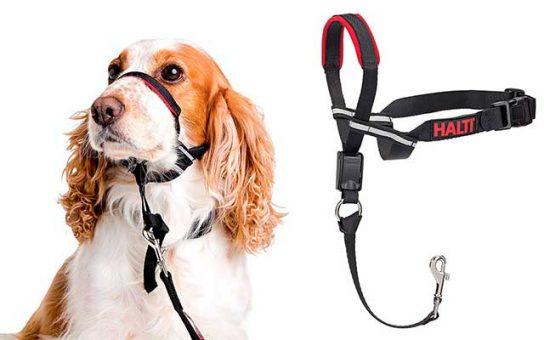 Collar de adiestramiento para perros - Halti Optifit