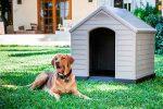 Caseta de resina para perros medianos y grandes - Keter Dog Kennel