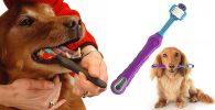 Cepillo de dientes para perros medianos y grandes - OFKPO