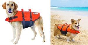 Chaleco salvavidas para perros con flotador para la cabeza - Outward Hound Ripstop