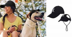 Pack de gorra para perro y gorra para humano - Pawaboo