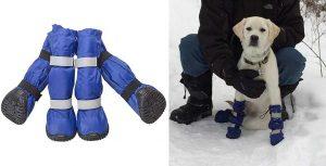 Botas de agua y nieve para perros (impermeables) - Pet Leso