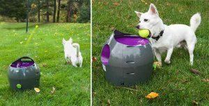 Lanzador automático de pelotas para perros - Petsafe