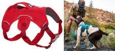 Arnés de seguridad para perros con 5 puntos de ajuste - Ruffwear Web Master