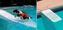 Rampa de piscina para perros - Skamper Ramp