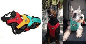 Arnés de seguridad para llevar perros en coche homologado - Sleepypod Clickit Sport