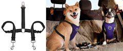 Cinturón de seguridad doble para llevar 2 perros en el coche - SlowTon