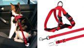 Arnés y cinturón de seguridad para llevar gatos en el coche - Trixie