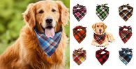Pack de 8 pañuelos/bandanas para perros - VIPITH