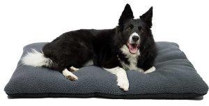 Colchoneta para perros barata, calentita e ideal para el invierno - Zollner