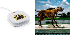 Bebedero automático para perros con activación por pisada - OneConcept Fiffi Splash