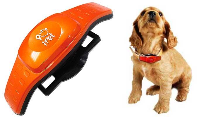 Rastreador GPS para perros y gatos sin cuota de suscripción - iPet GPS Tracker